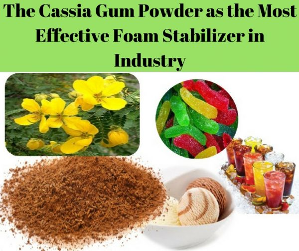 The Cassia Gum Powder as the Most Effective Foam Stabilizer in Industry